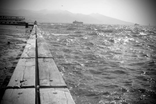 2013yds_2LS1498  © Levent ŞEN