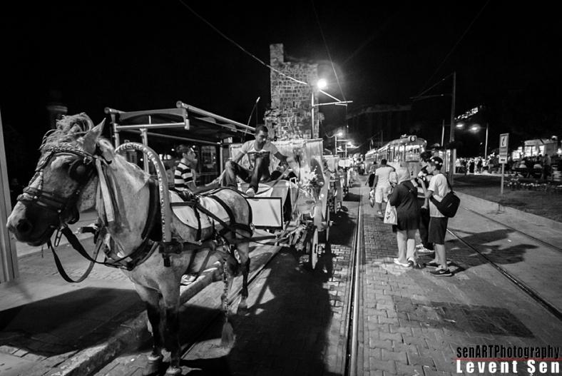 2013yds_2LS2746 © Levent ŞEN