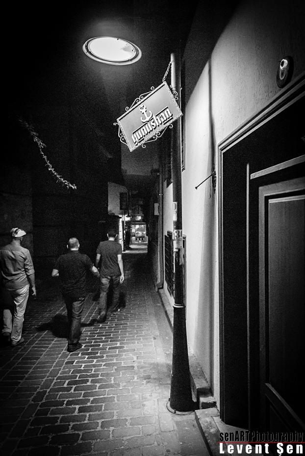 2013yds_2LS3323 © Levent ŞEN