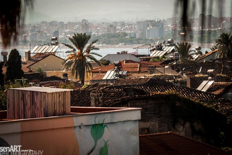 2013yds_2LS5134 © LEVENT ŞEN