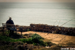pr2012aadv_36 © LEVENT ŞEN