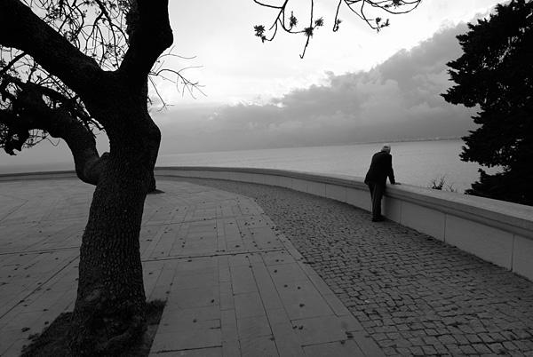 2014yds_3LS9357 © LEVENT ŞEN