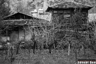 PR2014AAEA_09 © LEVENT ŞEN