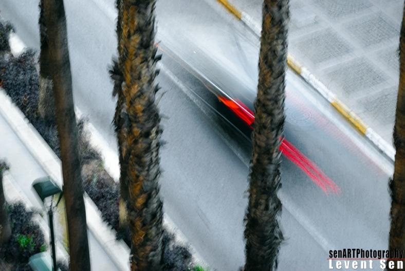 2013yds_2LS5225 © LEVENT ŞEN