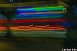 2013yds_2LS8321 © LEVENT ŞEN