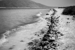 2015yds_SEN1868 © Levent ŞEN