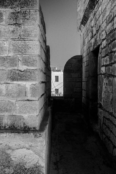 pr2003aabq0229 © Levent ŞEN