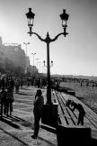 pr2003aabq0233 © Levent ŞEN