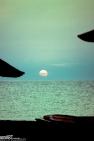 FINEART - pr2001aaaj0105 © LEVENT ŞEN