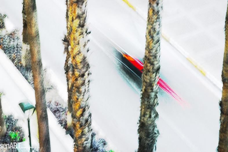 FINEART - 2013yds_2LS5225a © LEVENT ŞEN
