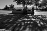 2016yds_dsc_0006 © LEVENT ŞEN