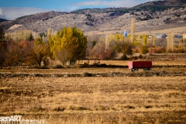 2016yds_sen5954 © LEVENT ŞEN