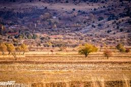 2016yds_sen5983 © LEVENT ŞEN