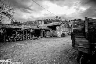 2016yds_sen6228 © LEVENT ŞEN