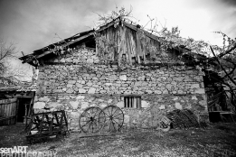2016yds_sen6231 © LEVENT ŞEN