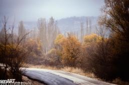 2016yds_sen6268 © LEVENT ŞEN