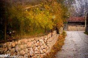 2016yds_sen6285 © LEVENT ŞEN