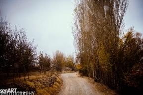 2016yds_sen6289 © LEVENT ŞEN