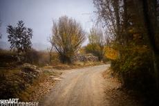 2016yds_sen6291 © LEVENT ŞEN