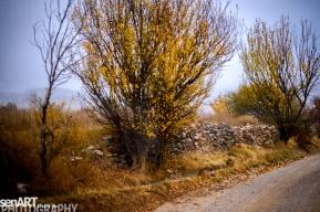 2016yds_sen6292 © LEVENT ŞEN