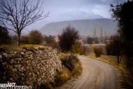 2016yds_sen6297 © LEVENT ŞEN