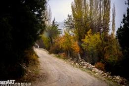 2016yds_sen6303 © LEVENT ŞEN