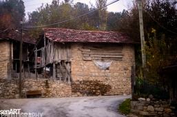 2016yds_sen6305 © LEVENT ŞEN