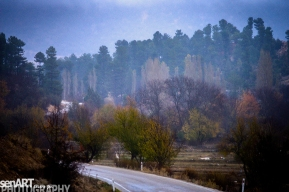 2016yds_sen6311 © LEVENT ŞEN
