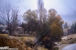 2016yds_sen6314 © LEVENT ŞEN