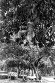 FINEART - nsb_levent_2-36 © LEVENT ŞEN