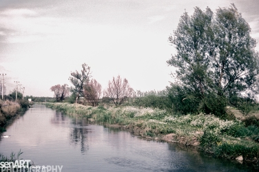 pr2016aaeb_22 © LEVENT ŞEN