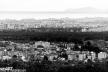 2016yds_sen6787-2 © LEVENT ŞEN