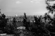 2016yds_sen6793-2 © LEVENT ŞEN