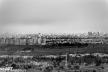 2016yds_sen6805-2 © LEVENT ŞEN