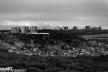 2016yds_sen6809-2 © LEVENT ŞEN