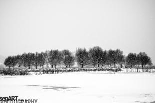 2016yds_sen7124 © LEVENT ŞEN