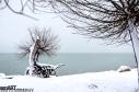 2016yds_sen7199 © LEVENT ŞEN