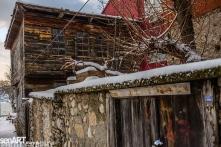 2017yds_sen7241 © LEVENT ŞEN