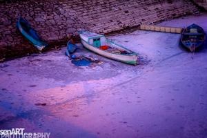 2017yds_sen_7908 © LEVENT ŞEN