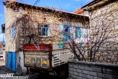 2017yds_sen_7973 © LEVENT ŞEN