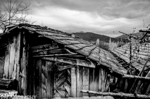 pr2016aaeg_12 © LEVENT ŞEN