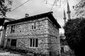 pr2016aaeg_23 © LEVENT ŞEN
