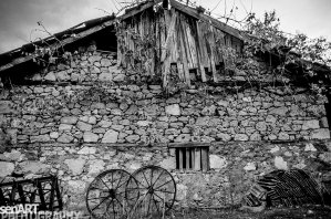 pr2016aaeg_28 © LEVENT ŞEN
