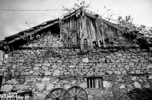 pr2016aaeg_29 © LEVENT ŞEN