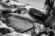 2017yds_sen_8032 © LEVENT ŞEN